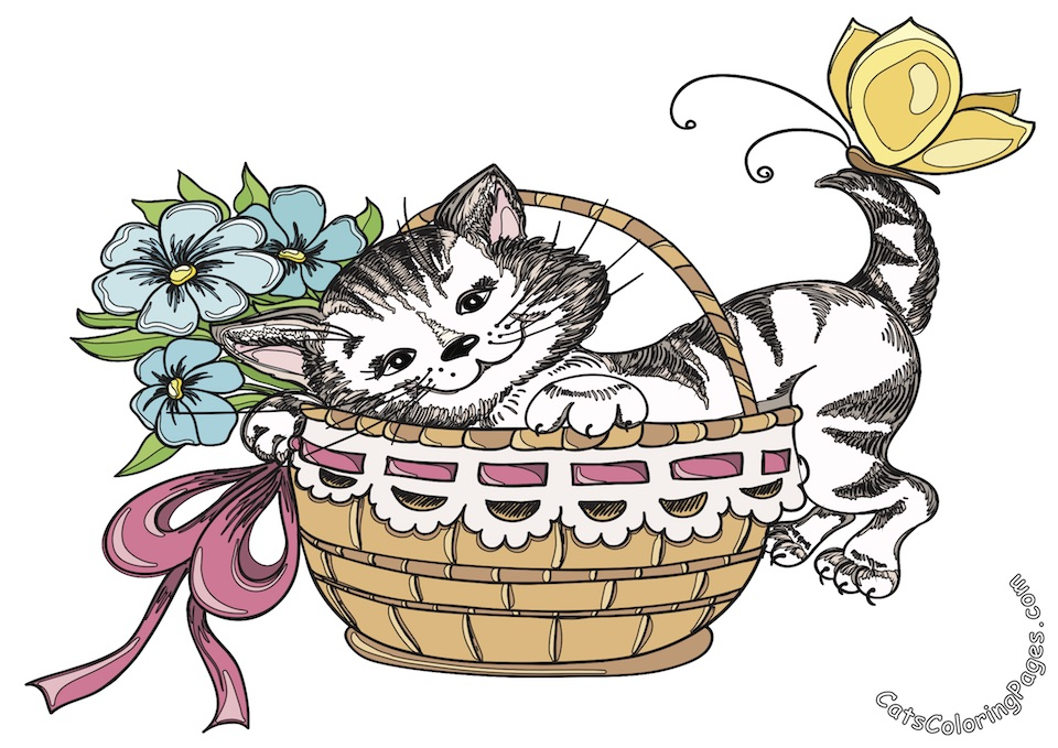Cat in Basket Colored Coloring Page