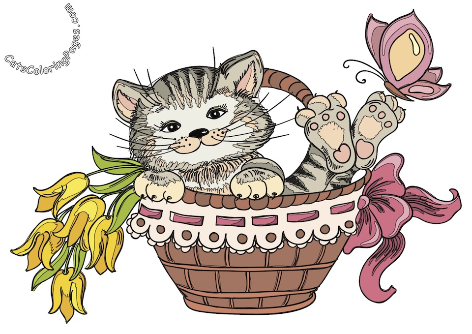 Happy Playful Kitten Colored Coloring Page