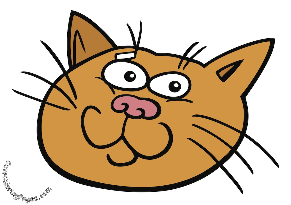 Prankster Tomcat Colored Coloring Page