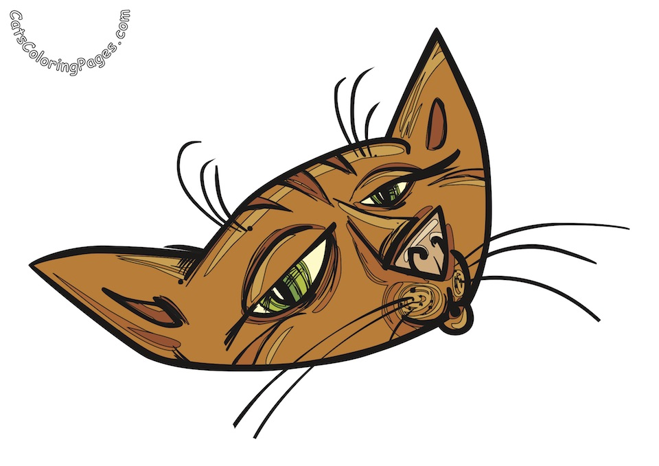 Expressive Cat Colored Coloring Page