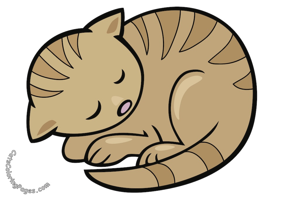 Sleeping Tabby Cat Colored Coloring Page