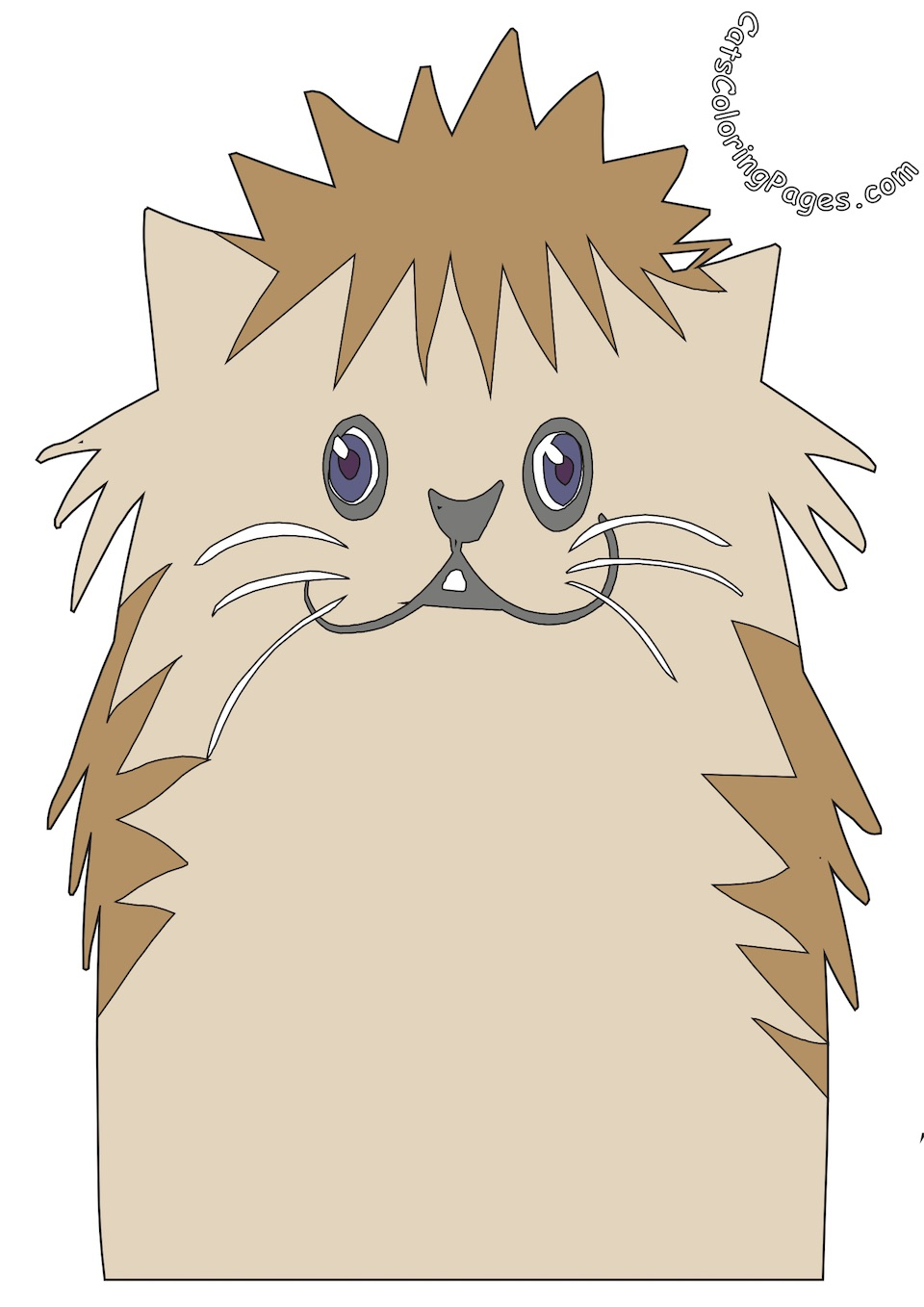 Fluffy Kitten Colored Coloring Page