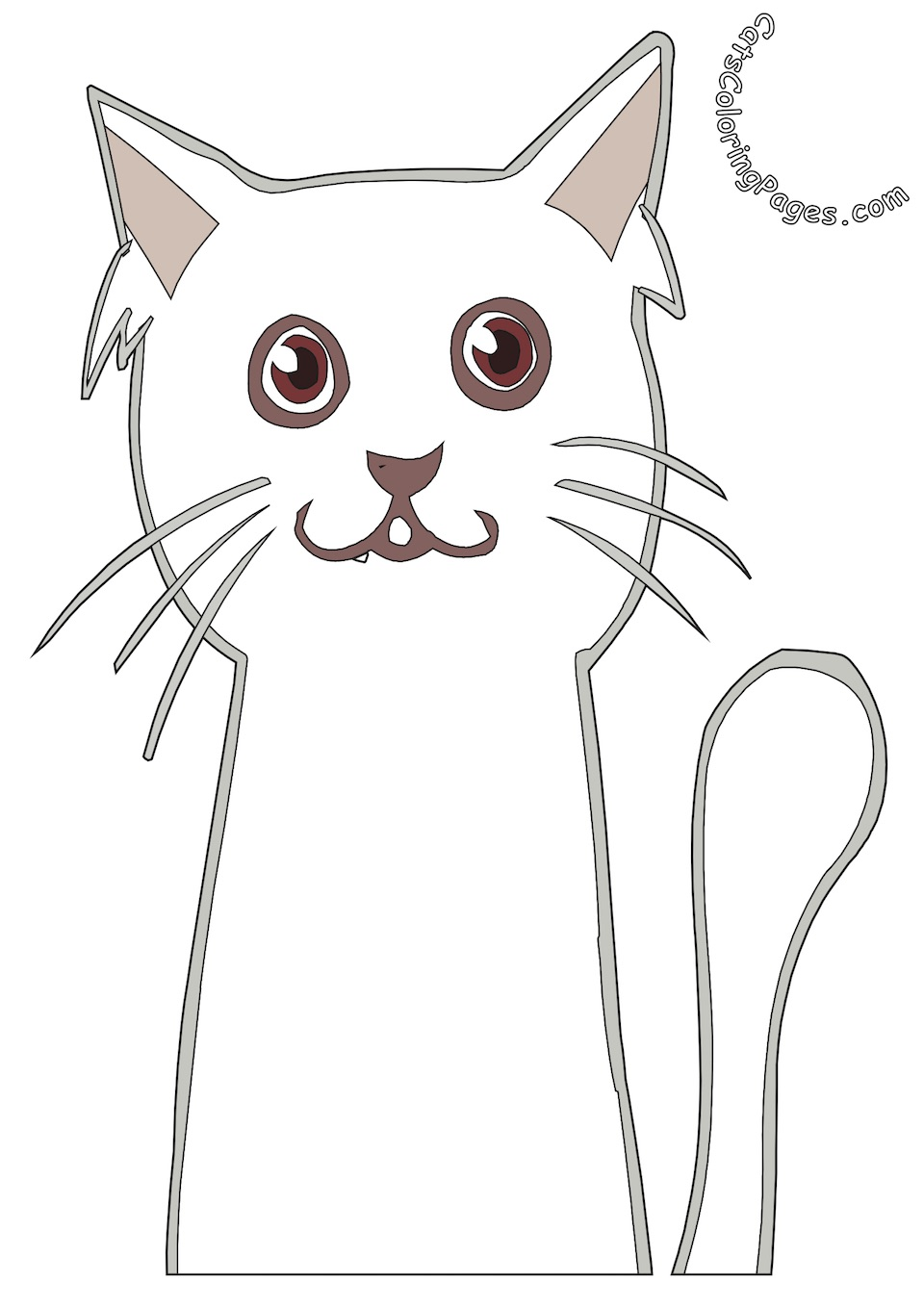 White Cat Colored Coloring Page