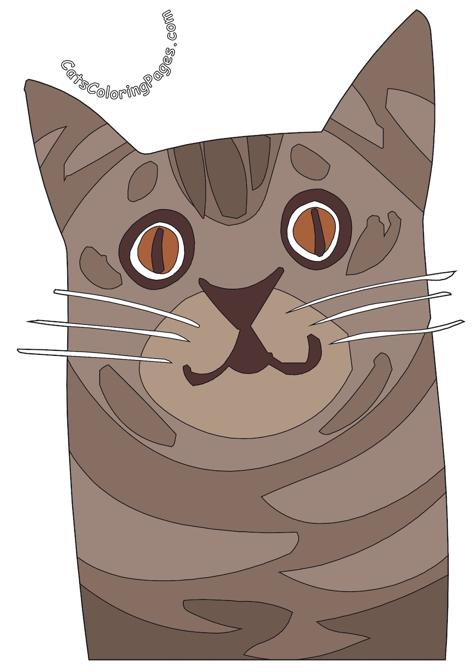 Spotted Senior Cat Colored Coloring Page
