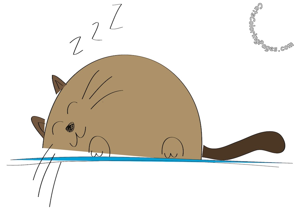 Sleeping Big Cat Colored Coloring Page